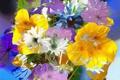 Картинка листья, линии, лепестки, краски, рендеринг, цветы