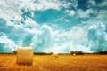 Картинка пшеница, поле, небо, облака, природа, стог, горизонт