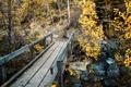 Картинка landscape, bridge, autumn, Colorado