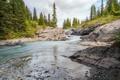 Картинка лес, ручей, Канада, Альберта, Banff National Park, речка, Alberta