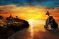 Картинка море, небо, солнце, полет, закат, птицы, фантастика
