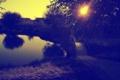 Картинка листья, вода, деревья, закат, мост, природа, озеро