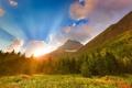 Картинка горы, восход, рассвет, ели