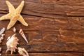 Картинка доски, ракушки, морская звезда
