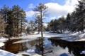Картинка зима, вода, солнце, снег, деревья, отражение, Кипр