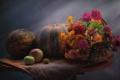 Картинка цинния, гайлардия, букет, натюрморт, бархатцы, тыква, яблоко