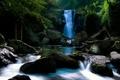 Картинка лес, река, камни, фото, водопад, мох