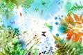 Картинка листья, бабочки, цветы, ветки, папоротник, стрекозы