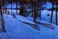 Картинка лес, звезды, фонарь, Eric Bjorlin, Change of Seasons, занесенные снегом лодки, поздний