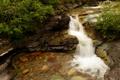 Картинка ручей, камни, США, каскад, кусты, Glacier National Park