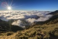 Картинка небо, трава, солнце, лучи, туман, высота, вершина