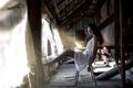 Картинка девушка, здание, платье, механизмы, техноарт