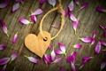 Картинка любовь, цветы, бумага, фон, обои, настроения, сердце