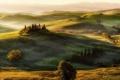 Картинка деревья, природа, поля, панорама