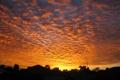 Картинка Sunset, Australia, Suburban, Homes, Perth