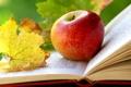 Картинка осень, листья, яблоко, книга, страницы