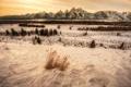Картинка зима, снег, горы, США, горный хребет, панорамма