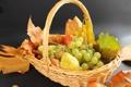 Картинка белый, листья, ягоды, корзина, виноград, фрукты, груши