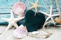 Картинка песок, пляж, звезды, ракушки, beach, wood, sand