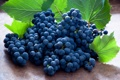 Картинка грозди, листья, виноград