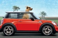 Картинка дорога, красный, пальмы, ветер, скорость, собака, очки