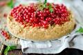 Картинка выпечка, тортик, красная смородина