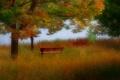 Картинка осень, деревья, скамья