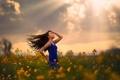 Картинка поле, девушка, цветы, солнечные лучи