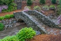 Картинка цветы, мост, парк, ручей, Южная Каролина, США, Гринвилл