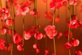 Картинка цветок, коллаж, ветка, весна, лепестки, открытка