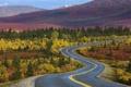 Картинка дорога, осень, лес, деревья, Аляска
