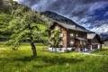 Картинка трава, цветы, дом, дерево, гора, HDR, весна