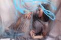 Картинка фон, девушка, стекло
