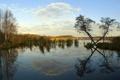 Картинка природа, деревья, отражение, неба, озеро