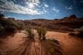 Картинка трава, скала, пустыня, каньон