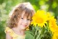 Картинка подсолнухи, улыбка, девочка, ребёнок, голубоглазая
