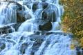Картинка осень, листья, ветки, водопад, поток, желтые, каскад