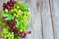 Картинка виноград, green, листья, leaves, bowl, grapes, зеленый