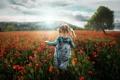 Картинка поле, лето, небо, трава, цветы, настроение, мак