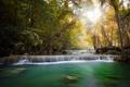 Картинка джунгли, лучи солнца, деревья, водопад, пейзаж, река