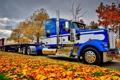 Картинка листья, Петербилт, дорога, передок, Peterbilt, грузовик