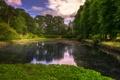 Картинка газон, пруд, Великобритания, кусты, деревья, Erddig Country Park, парк