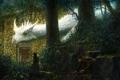 Картинка лес, кошка, белый, фантастика, дракон, пень, арт