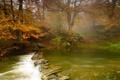 Картинка осень, река, деревья