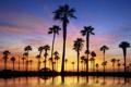 Картинка закат, пейзаж, люди, солнце, отдых, вода, пальмы