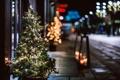 Картинка зима, свет, ночь, ветки, город, огни, улица