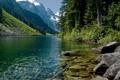 Картинка лес, горы, река, камни