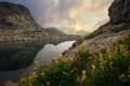 Картинка цветы, горы, тучи, озеро, камни, скалы, лучи солнца