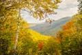Картинка осень, лес, небо, пейзаж, горы, дерево, береза