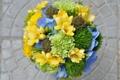 Картинка фото, Цветы, Бутон, Букет, Розы, Гортензия, Фрезия
